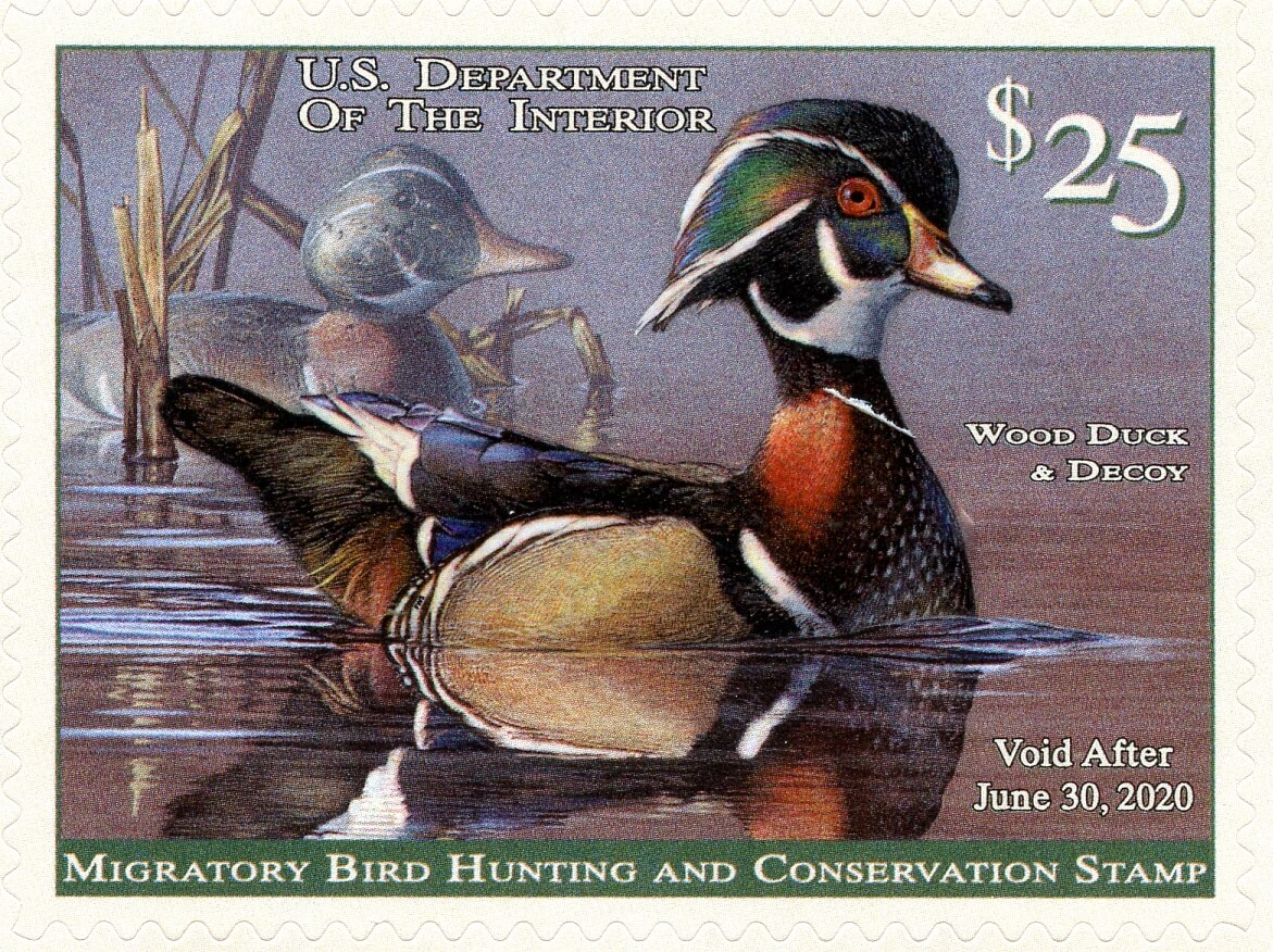 Image result for 2019 duck stamp
