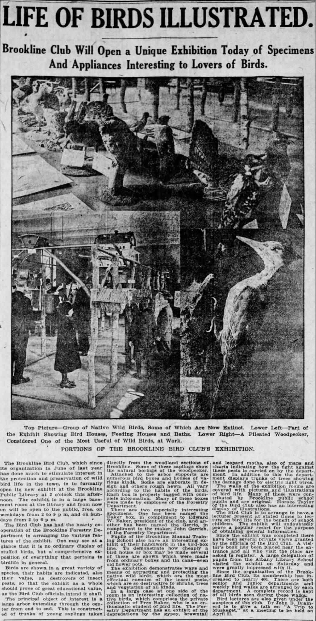 Boston Globe April 6, 1914
