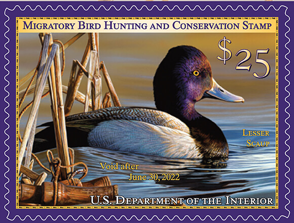 2021-2022 Federal Duck Stamp