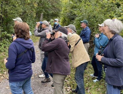 BBC Board Members Go Birding